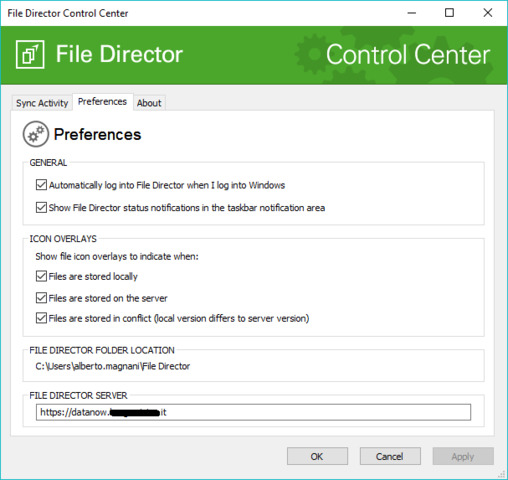 File director windows client no ovarlays, no sync